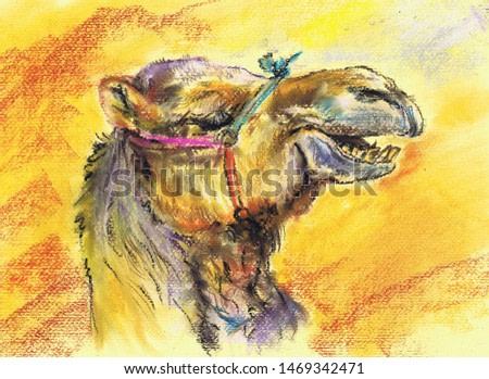 Camel in the desert. Pastel painting on cardboard.