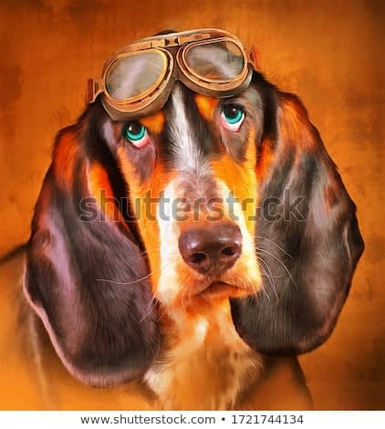 modern oil painting of cute brown Schweizer Laufhund dog with pilot helmet artist collection of animal painting for decoration and interior, canvas art, abstract, illustration. vintage glasses