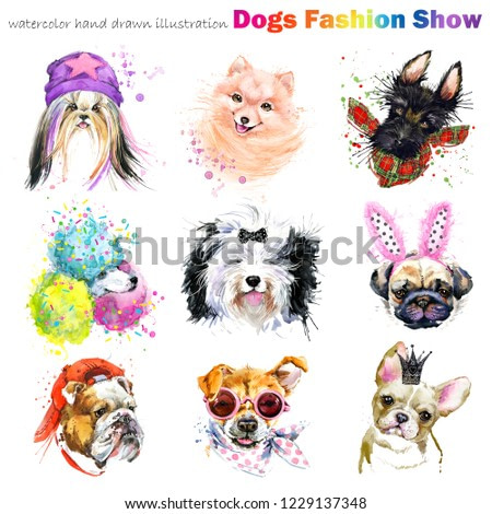 heads dog with fashion accessories. Trendy dogs breed set. Pets shop background. cute domestic animal watercolor illustration. Dog show