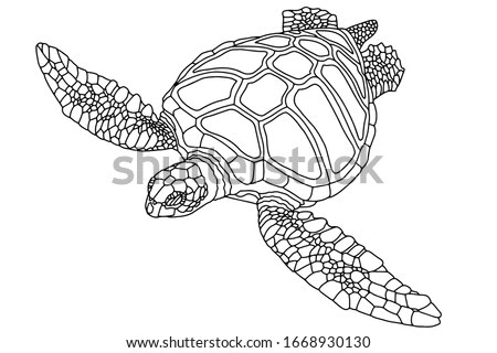 Vector illustration for coloring book. Realistic design. Sea turtle. Marine inhabitants. Children's illustration.
