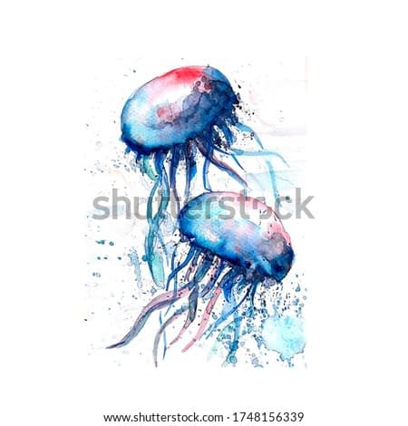 Aquarelle painting of jellyfish sketch art illustration