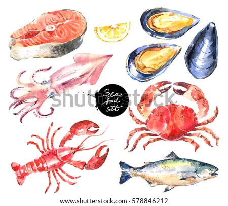 Watercolor hand drawn seafood set. Painted isolated illustration on white background