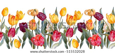 Floral horizontal border.Colorful tulips on white background.Botanical illustration. Watercolor painting.