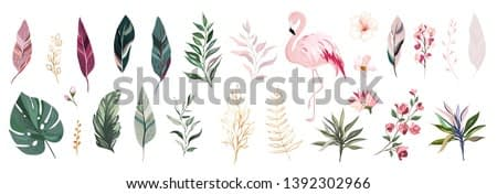 Tropical vector leaf with gold, flowers and flamingo. set  floral illustration. exotic Leaves isolated on white background. collection with flowers for invitation