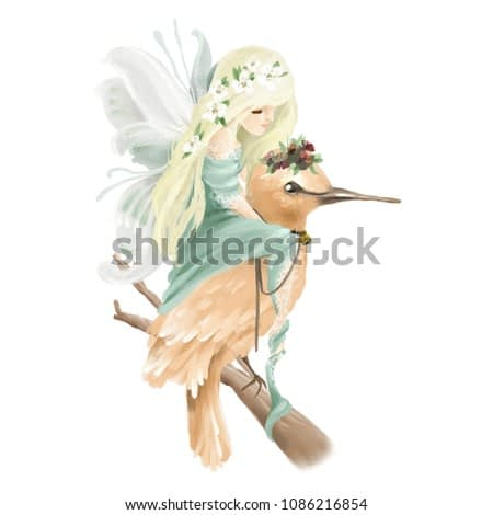 Beautiful hand painted oil fairy riding the enchanted bird with floral bouquet, flowers wreath on old wood branch isolated on white