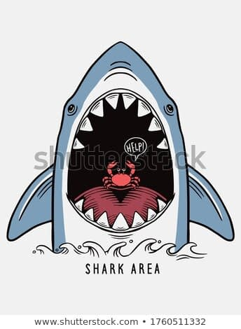 Hand drawn vector shark illustration with a cute crab  for t-shirt prints, posters and other uses.