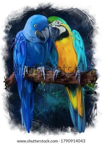 Two macaws are sitting on a branch