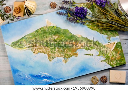 Oil painting map of Kamchatka in the form of a fish coho with decorations. Top view