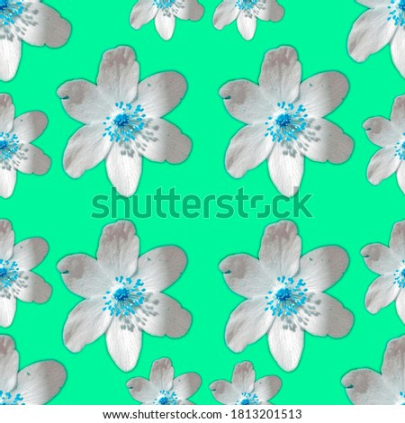 flower on turquoise background seamless patern