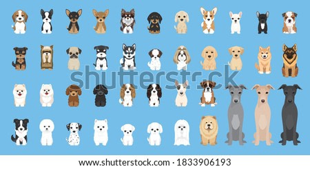 dogs vector Cute puppy pet characters breads doggy illustration. Different type of vector dogs