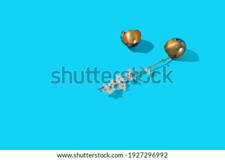 White blossom and golden egg shells concept on light blue backgr