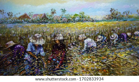 Art painting Oil color Thai land Harvest Rice