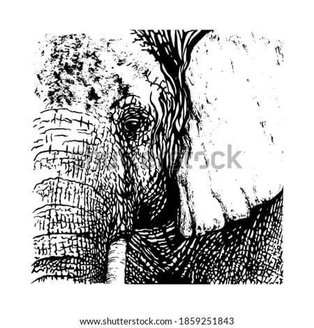 Elephant painted with black ink brush. Vector illustration