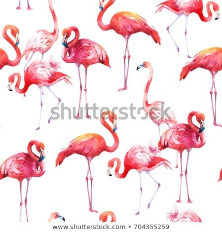 Watercolor seamless pattern on white background. Illustration with pink flamingo. Tropical bird. Paradise.