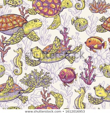 Vintage sea life natural seamless pattern, underwater vector texture, fish, sea turtle, shells and seaweed. Nautical hand drawn design objects.