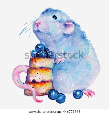 Watercolor minimalistic illustration of pet rat. Colorful fantasy painting isolated on white background.
