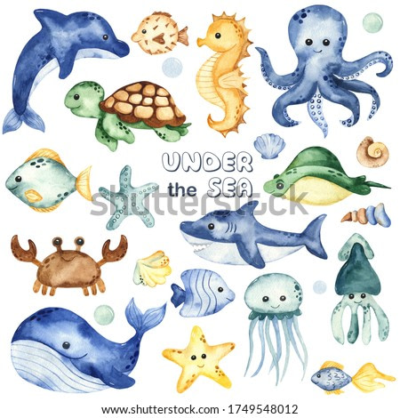 Underwater creatures, whale, octopus, shark, crab, dolphin, sea turtle, fish. Watercolor hand drawn clipart