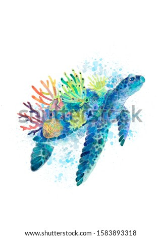 Watercolor illustration with sea turtle. Sea turtle with corral.