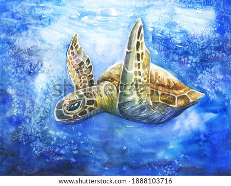 Beautiful bright realistic turtle in the ocean. Hand drawn illustration for earth protection, supporting sea creatures, animal shelter. Bubbles, blue sea water coral reef.