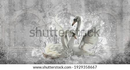 two white swans in your room for a romantic setting