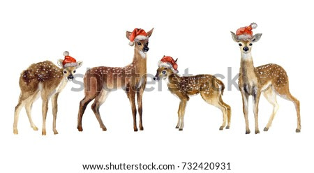 Watercolor cute stags on the white background