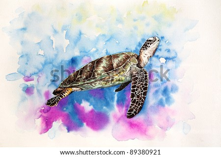 Free hand painting from watercolor demonstrated a Hawksbill Sea Turtle.
