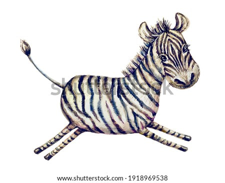Savannah animals funny character - baby zebra isolated on white. Watercolor painting