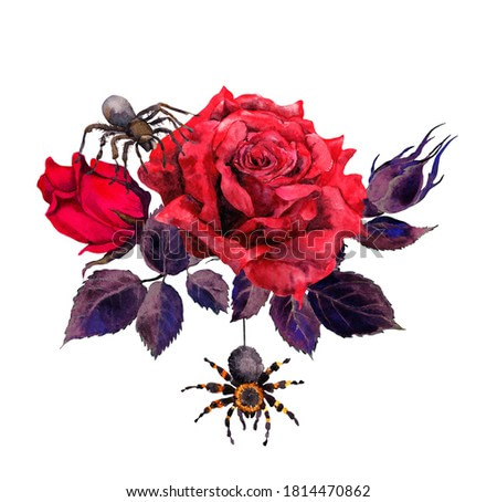 Red roses flowers with spiders. Watercolor for Halloween, gothic style tattoo