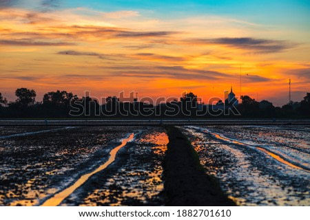 The sunset in the field, in the evening, the color is beautiful