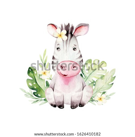 Watercolor cute baby cartoon zebra animal character isolated on white. Hand painted safari tropical little baby cat for nursery print poster design and baby shower card making