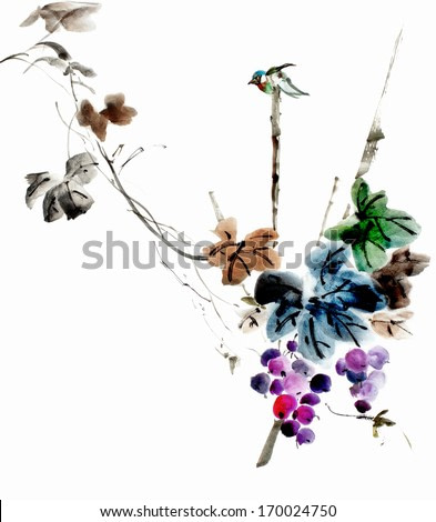 original art, watercolor painting of tiny, colorful bird on branch with grapes