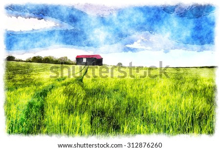 Watercolour painting of an old barn in a field of lush green barley