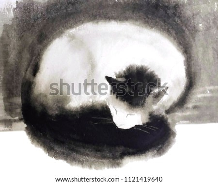 cute fluffy white cat with black tail and head, sleeping, curled up, on black and white background, watercolor painting