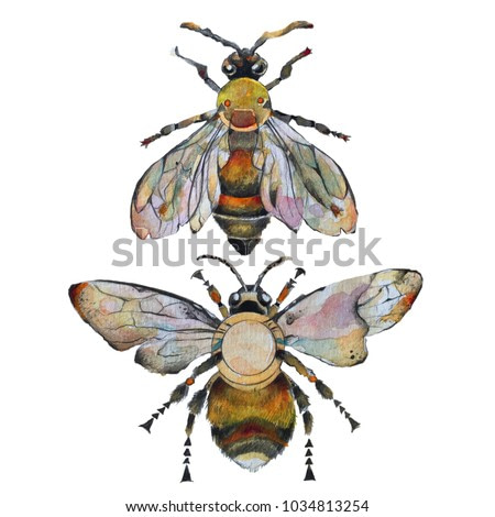 Isolated watercolour painting of bee