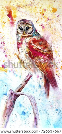 A colored owl painted in watercolor sits on a branch. ?olor splashes of watercolor