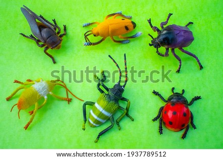 Plastic insect toys on green background