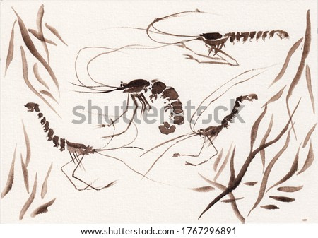Watercolor illustration of marine life in Chinese Ink technique. Oriental style underwater landscape with shrimps & seaweed plants. Calm background painting. Monochrome artwork. Asian brush strokes.