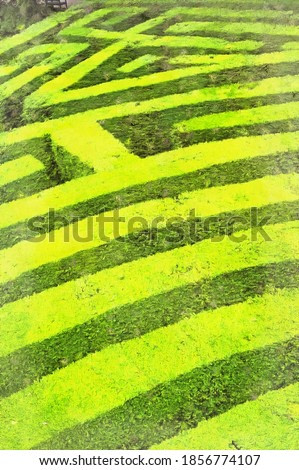 Garden with labyrinth colorful painting