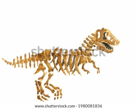 watercolor illustration of a Tyrannosaurus rex skeleton isolated on a white background