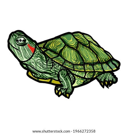 Realistic and full color drawing of a sea turtle on a white background in a clean style. Vector illustration.