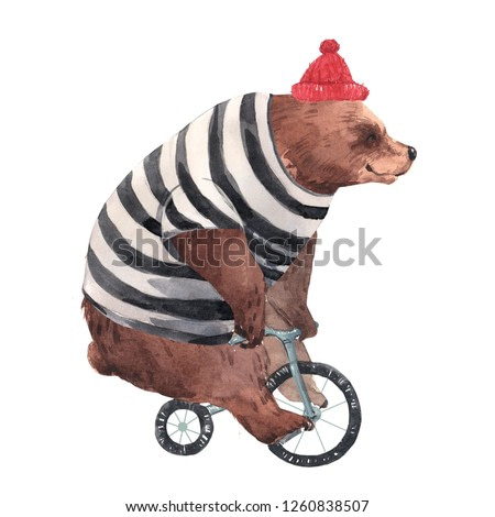 Watercolor illustration of a bear on a bicycle, striped sweater, red hat. Hipster bear