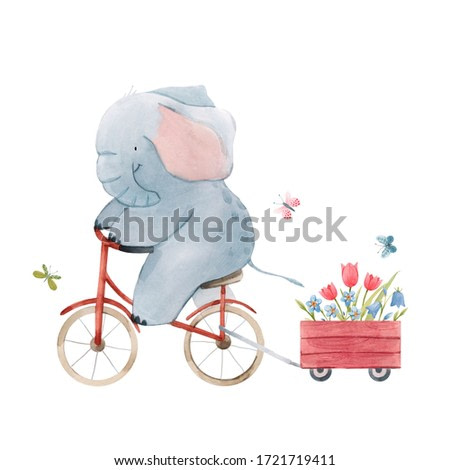 Beautiful stock illustration with cute watercolor baby elephant on bike. Animal with bicycle hand drawn painting.