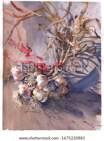 Still life painting of garlic in classical style drawing like old watercolor masters. Original watercolor for decorate wall in interior or create cards with invitation, congratulation postcard.