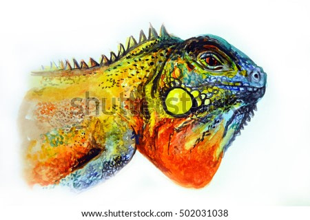 Colorful iguana watercolor painting