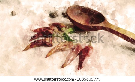 Horizontal illustration of the food ingredient - red chili pepper, greenery and wooden spoon decorated in watercolor style