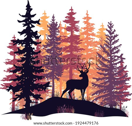 Deer with antlers posing on the hill covered with grass. Orange, violet and pink coniferous trees.