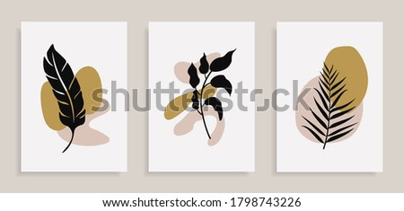 Set of posters with elements of tropical leaves and abstract shapes, modern graphic design.
