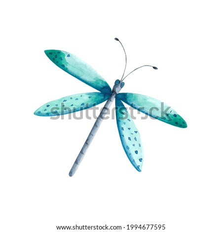 Watercolor mint green and blue dragonfly illustration. Flying insect clip art isolated on white background. Entomological painting. Dragonfly card, invitation, poster, pint, sublimation.