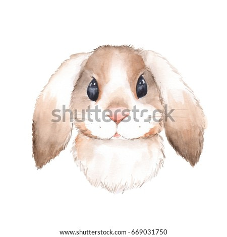 Cute rabbit. Watercolor illustration . Isolated on white background