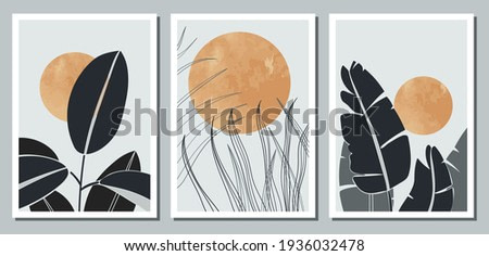 A set of three abstract minimalistic aesthetic floral illustrations. Dark silhouettes of plants on a light background with circles. Modern vector posters for social networks, web design, interiors.